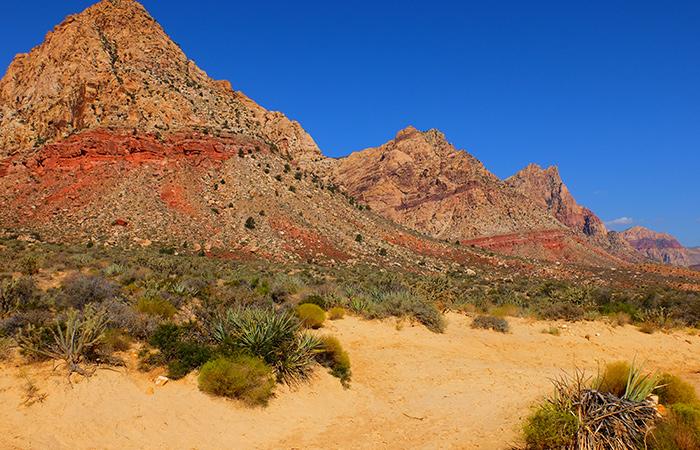 Passeio a Cavalo no Red Rock Canyon em Las Vegas - Vista