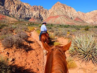 Passeio a Cavalo no Red Rock Canyon em Las Vegas - Guia
