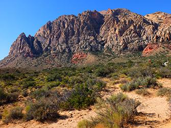 Passeio a Cavalo no Red Rock Canyon em Las Vegas - Natureza