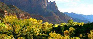 Passeio de um dia para Zion National Park saindo de Las Vegas