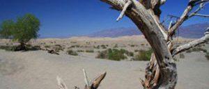 Tour de um dia para o Vale da Morte saindo de Las Vegas